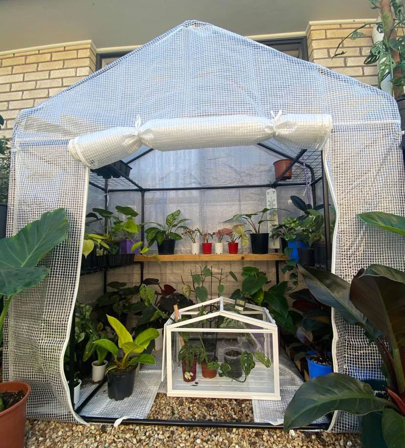 Greenhouses to keep plants warm during winter.