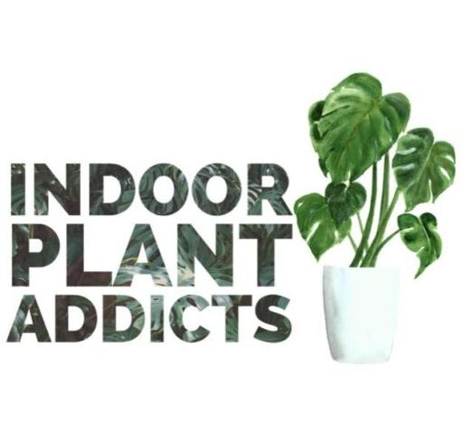 Indoor Plant Addicts